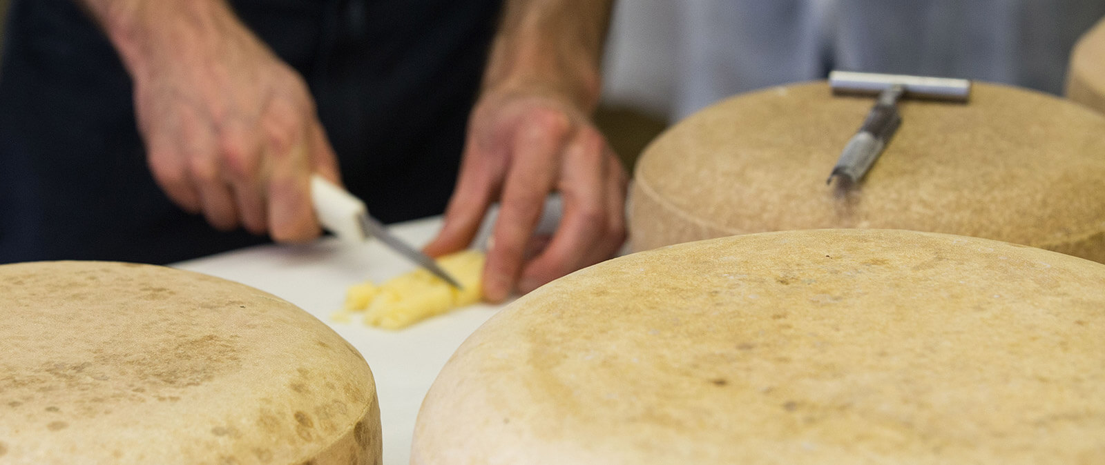 Chalet Cheese Cooperative | Cheesemakers | Wisconsin Cheese